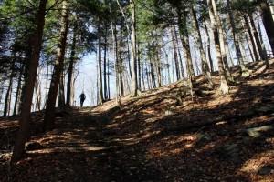 Bromont-Sentier