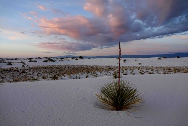 White Sands National Park (3) - copie