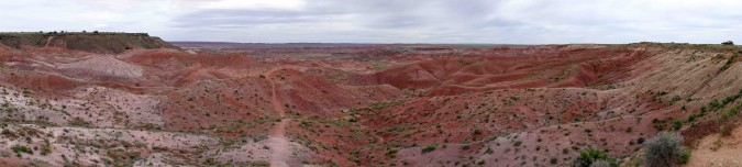 Petrified Forest - Painted Valley - copie