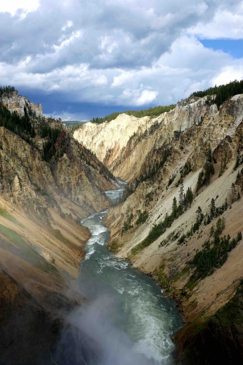 Le canyon Yellowstone - copie