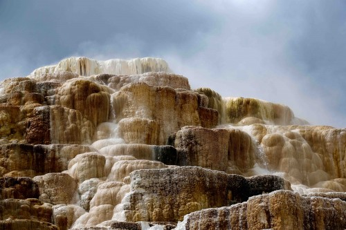 Les formations calcaires de Mammoth Hot Springs - copie