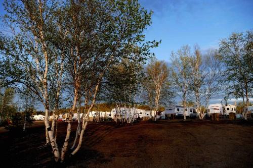 Camping Manic 2 - copie