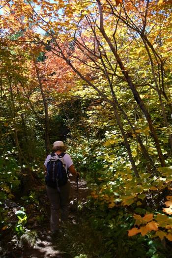 Sur le sentier Top of the Giant.