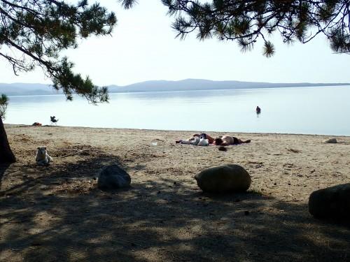 Des campings pour la famille et la plage.