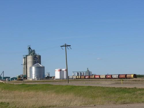 Le train et les grains. Une scène typique des Prairies albertaines.